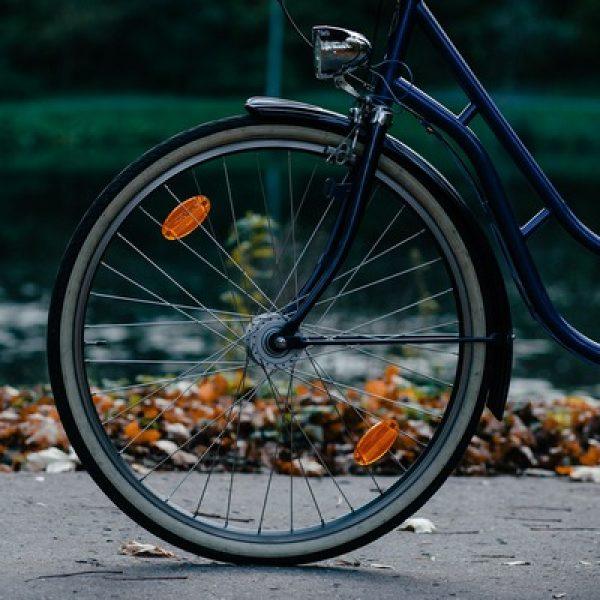 Manutenzione del verde sulle piste ciclopedonali